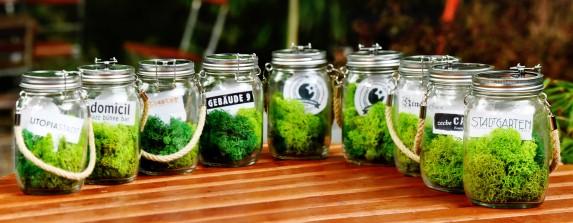 Green Musik BBQ 2016